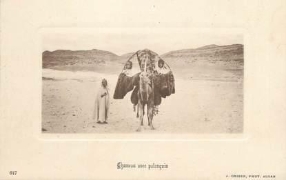 """CPA ALGERIE """" Chameau avec Palanquin""""/ GEISER"""