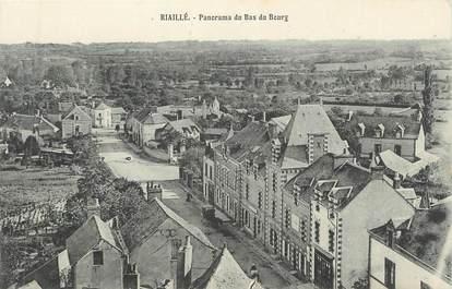"CPA FRANCE 44 "" Riaillé, Panorama du Bas du Bourg"""