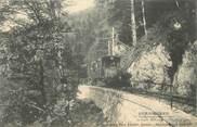 """88 Vosge CPA FRANCE 88 """" Gérardmer, Le tramway dans la forêt"""" / TRAMWAY"""