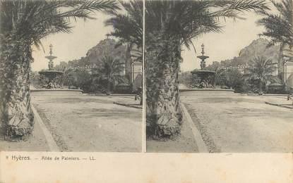 """CPA FRANCE 83 """" Hyères , Allée des Palmiers"""" / STEREO"""