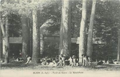"""CPA FRANCE 44 """"Blain, Forêt du Gâvre, le rond point"""""""