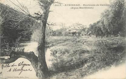 """CPA FRANCE 06 """" Auribeau """""""
