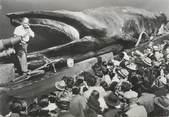 "Animaux CPSM ""La baleine géante Jonas"""