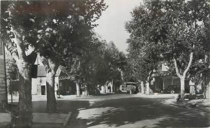 """CPSM FRANCE 13 """"Senas, Avenue André Aune"""""""