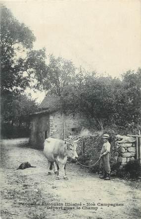 """/ CPA FRANCE 87 """"Limousin illustré, nos campagnes"""" / VACHE"""