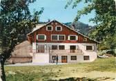 """74 Haute Savoie CPSM FRANCE 74 """" Reyvroz, Chalet Les Hermones"""""""