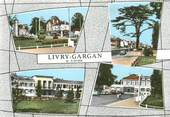 "93 Seine Saint Deni CPSM FRANCE 93 ""Livry Gargan"""