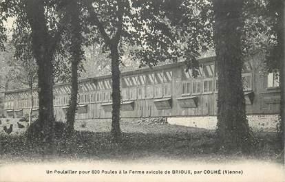 """CPA FRANCE 86 """"Ferme avicole de Brioux par Couhé"""""""
