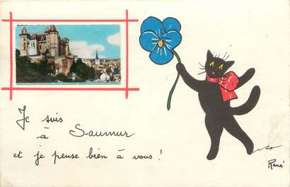 "CPA FRANCE 49 ""Saumur, Chat"""