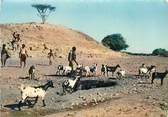 Afrique CPSM SOMALIE DJIBOUTI