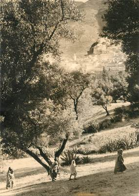 "CPSM MAROC ""la ville sainte de Moulay Idriss"" / N° 74 PHOTO EDITION BERTRAND ROUGET CASABLANCA"