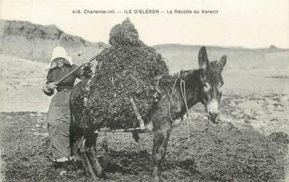 """CPA FRANCE 17 """" Ile d'Oléron, récolte du Varech """" / Âne"""