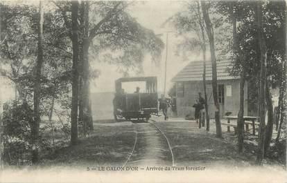 "CPA FRANCE 17 "" La Tremblade "" / tramway"