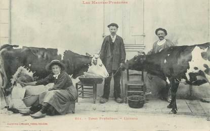 """CPA FRANCE 65 """" Les hautes-Pyrénées, laitiers """" / vache"""