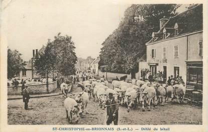 """CPA FRANCE 71 """" Saint Christophe en Brionnais, défilé du bétail """""""
