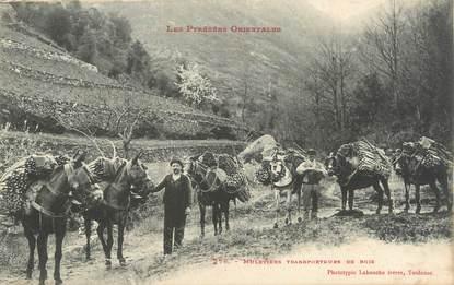 """CPA FRANCE 66 """"Muletiers, transporteur de bois"""""""