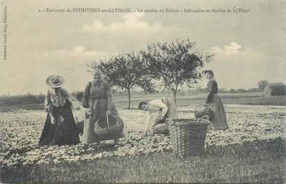 """CPA FRANCE 45 """"Env. de Pithiviers en Gatinais, la récolte du Safran"""""""