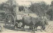 """87 Haute Vienne CPA FRANCE 87 """" Notre Limousin, attelage """""""