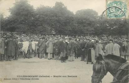 """CPA FRANCE 14 """"Villers Bocage, le marché aux bestiaux"""""""