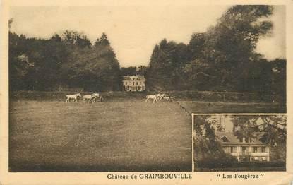 """CPA FRANCE 76 """"Chateau de Graimbouville"""""""