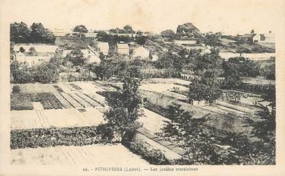 """/ CPA FRANCE 45 """"Pithiviers, les jardins maraichers"""""""