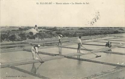 """/ CPA FRANCE 17 """"Saint Martin de Ré, marais salants, la récolte du sel"""""""