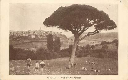 "/ CPA FRANCE 81 ""Puycelsi, vue du Pin Parasol"""
