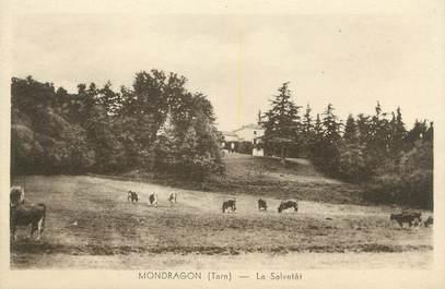"/ CPA FRANCE 81 ""Mondragon, le Salvetât"""