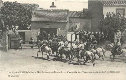 """CPA FRANCE 13 """" Saintes Maries de la Mer, arrivée des taureaux conduit par les Gardians """""""