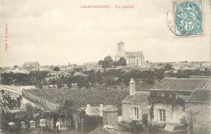 """/ CPA FRANCE 49 """"Champtoceaux, vue générale"""""""