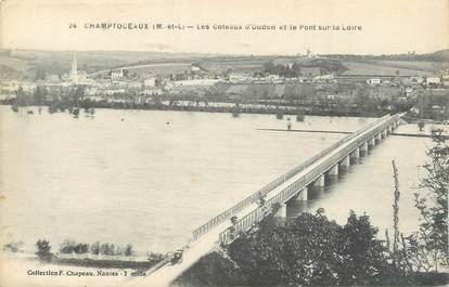 """/ CPA FRANCE 49 """"Champtoceaux, les coteaux d'Oudon et le pont sur la Loire"""""""