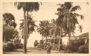 """Afrique CPA BÉNIN """"Cotonou, une avenue bordée de cocotiers""""/ N° 37"""