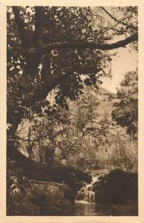 "CPA BÉNIN ""Sur la route de Copargo""/ N° 58"
