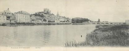 "CPA PANORAMIQUE FRANCE 41 ""Panorama de Montrichard"""