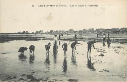 """CPA FRANCE 14 """"Luc sur Mer, les pêcheurs de crevettes"""""""