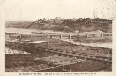 """CPA FRANCE 44 """"Oudon, vue sur la Loire et Champtoceaux"""""""