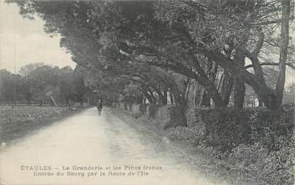 """CPA FRANCE 17 """"Etaules, la granderie et les Pincs francs, entrée du bourg par la route de l'Ile"""""""