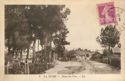 """CPA FRANCE 33 """"La Hume, dans les pins"""""""