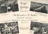 """37 Indre Et Loire CPSM FRANCE 37 """"Vernou sur Brenne près Vouvray, Royal Georges"""""""