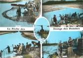 """01 Ain CPSM FRANCE 01 """"La pêche des Etangs des Dombes"""""""