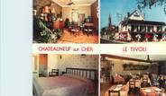 """18 Cher CPSM FRANCE 18 """"Châteauneuf sur Cher, hôtel restaurant Le Tivoli"""""""