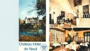 """16 Charente CPSM FRANCE 16 """"Nieuil, château hôtel"""""""