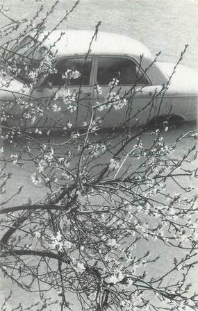 """CPSM FRANCE 75 """"Paris inondé 1978, le printemps"""""""
