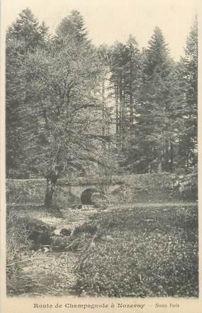 """CPA FRANCE 39 """"Route de Champagnole à Nozeroy, sous bois"""" / Ed. R. CHAPUIS"""