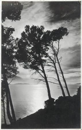 """CPSM FRANCE 83 """"Cavalaire sur Mer, coucher de soleil sur les Iles d'Or"""""""