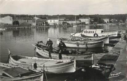 "CPSM FRANCE 83 ""Le Brusc, barques au repos"""