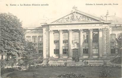 """CPA FRANCE 44 """"Nantes, le Muséum d'Histoire Naturelle"""" / COLLECTION R. GUENAULT"""