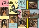 """49 Maine Et Loire CPSM FRANCE 49 """"Brossay, Caveau de Noë"""""""