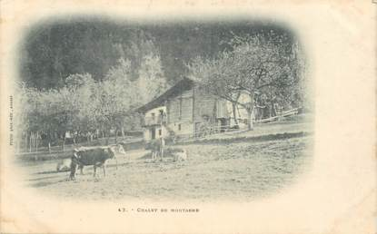 """CPA FRANCE 74 """"Chalet de montagne"""""""