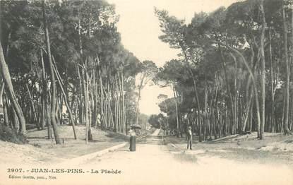 """CPA FRANCE 06 """"Juan les Pins, la Pinède"""""""